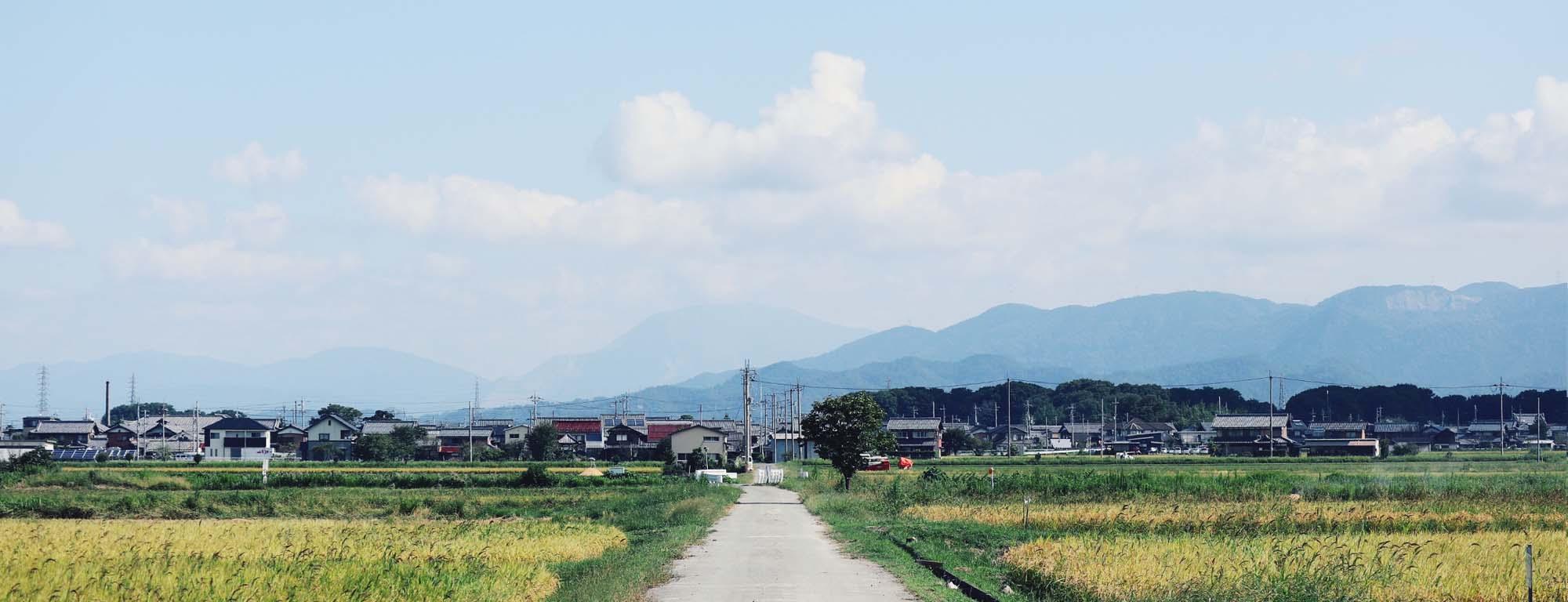 吉田の写真