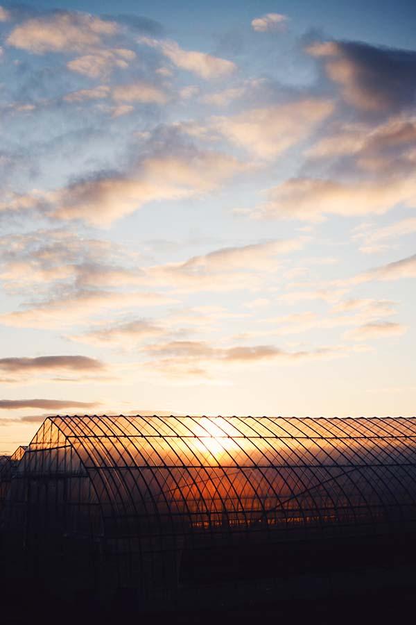 ソレプロのある吉田の風景
